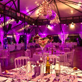 WP- Wedding planner Paris …